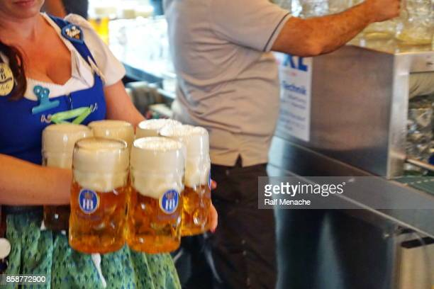 beer is the traditional drink at the oktoberfest. munich, bavaria. - beer stein stock photos and pictures