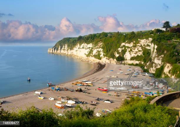 uk, beer, view to beach and jurassic coast - devon stock pictures, royalty-free photos & images