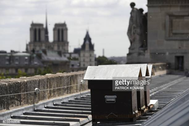 Bees fly next to beehives set up by French beekeeper Audric de Campeau on the roof the Monnaie de Paris on July 16 2017 in Paris as the NotreDame...