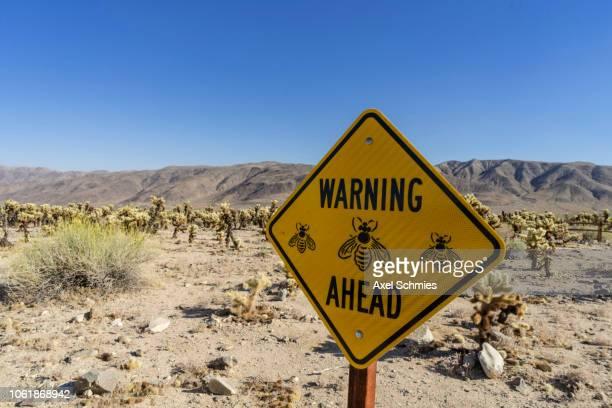 Bees warning sign Joshua Tree National Park