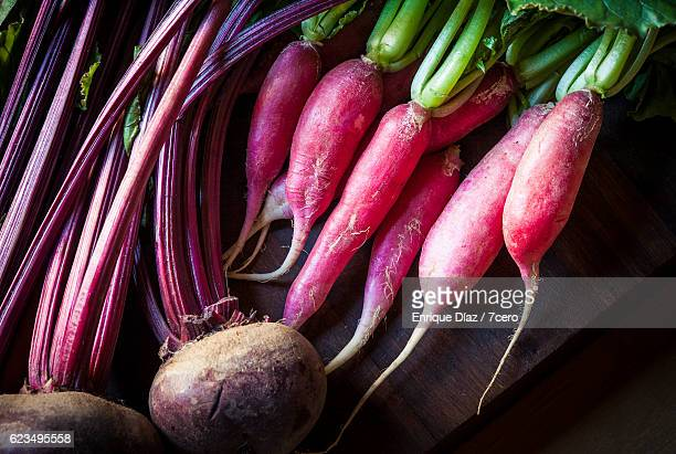 beetroot and radish - farm to table stock photos and pictures