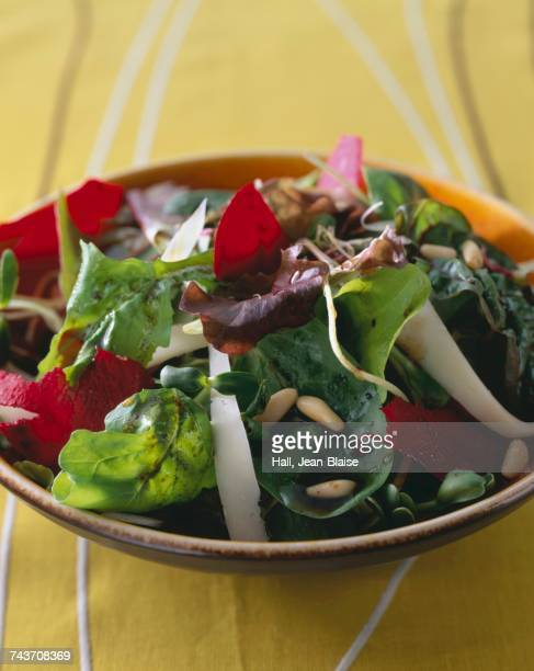 Beetroot,young sprouts and pine nut salad