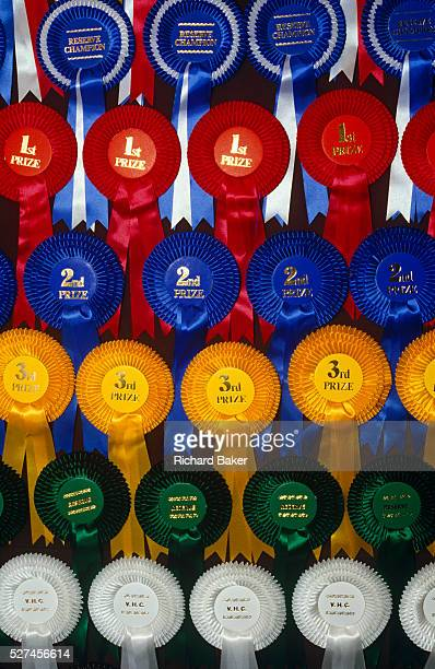 Before finalists take part in their last exercises at a gymkhana pony competition these rosettes prizes seen here in closeup detail wait to be...