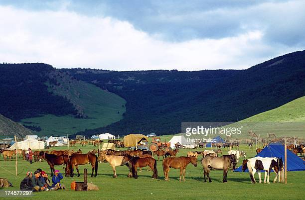 Before the start of the children's horseracing event during the Naadam festival competitors put up their gers in the steppe not far from the...