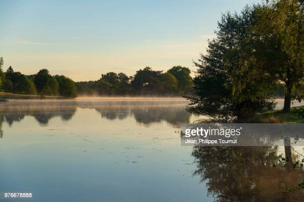 begining of a beautiful day in by a lake, france - allier stock photos and pictures