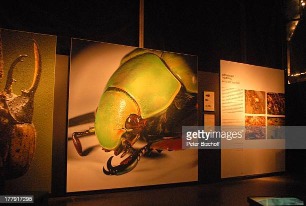 BegleitAusstellung zu Amazonien größtes 360GradPanorama der Welt Asisi Panometer Leipzig Sachsen Deutschland Europa Hommage an Alexander von Humboldt...