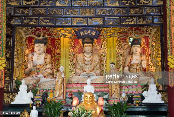 behind the buddha - carol schiraldi stock pictures, royalty-free photos & images