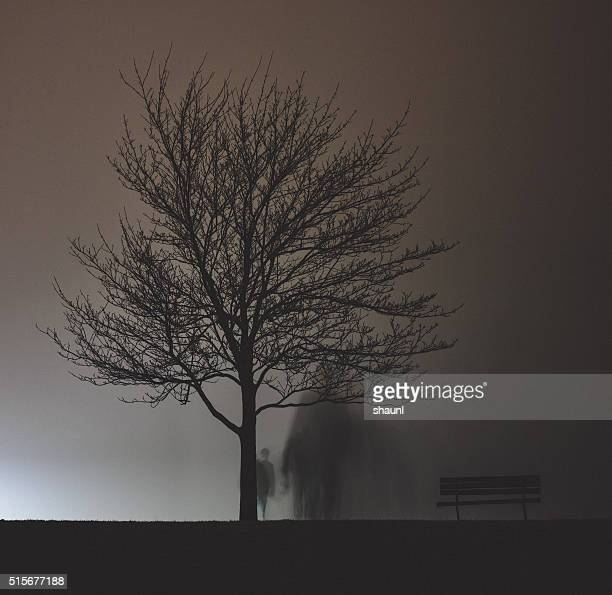 Derrière l'arbre