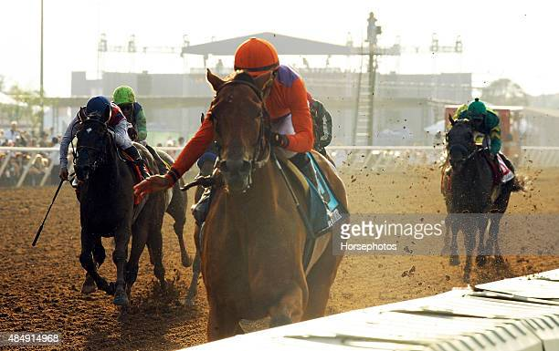 Beholder with jockey Gary Stevens up becomes the first filly to win the Pacific Classic on August 22 2015 at Del Mar Thoroughbred Club in Del Mar...