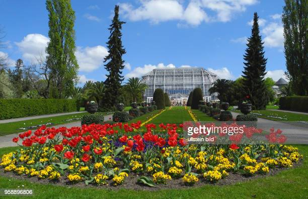 570 Botanic Garden Berlin Photos And Premium High Res Pictures Getty Images