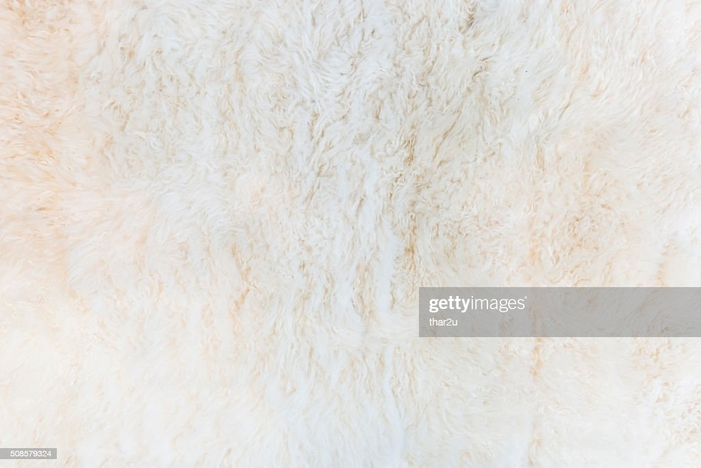 beige carpet : Stock Photo