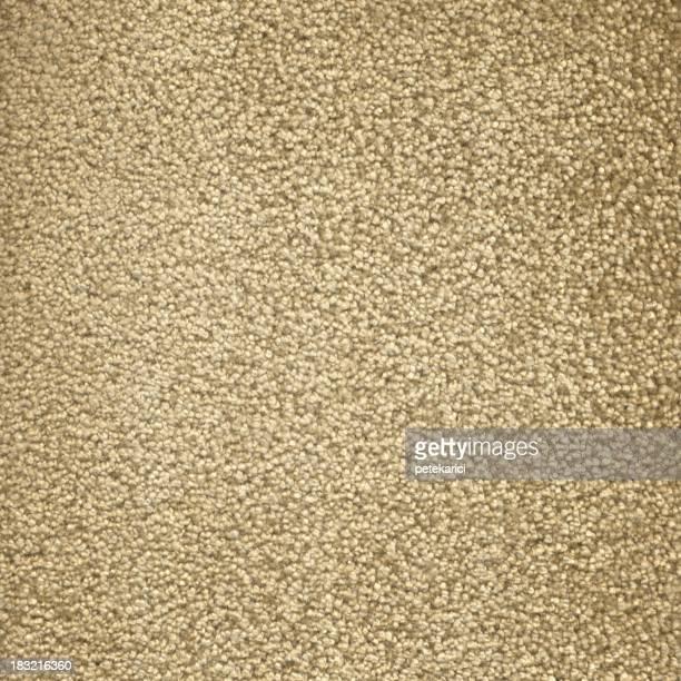 Beige Fluffy Carpet