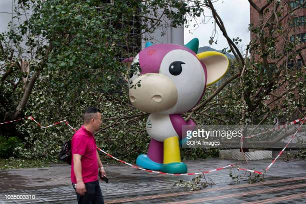 Beijing 2008 Paralympics mascot surrounded by damaged trees after super typhoon Mangkhut has passed Hong Kong The super typhoon Mangkhut has passed...