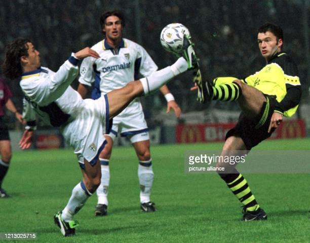 Beim ChampionsleagueSpiel AC Parma Borussia Dortmund am im italienischen Parma kämpfen der Dortmunder Stephane Chapuisat und Fabio Cannavaro um den...