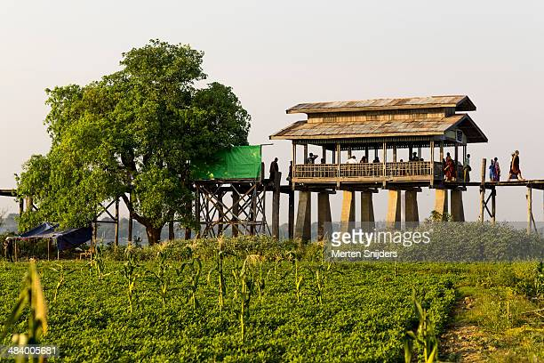 u bein bridge resting hut and tree - merten snijders - fotografias e filmes do acervo