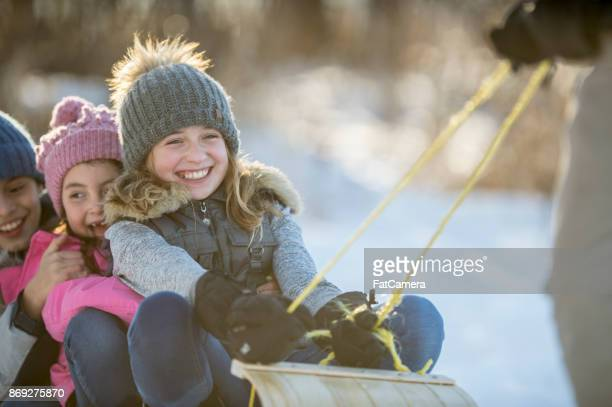 being pulled on a toboggan - mitten stock pictures, royalty-free photos & images