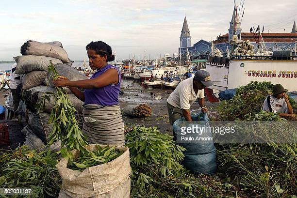 CONTENT] Belem is considered the entrance gate to the Amazon and for more than 300 years boats have unloaded their wares from deep in the Amazon at...