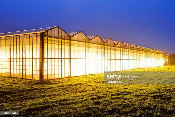 Beleuchtete Gewächshäuser in den Vier und Marschlanden Hamburg Deutschland Europa