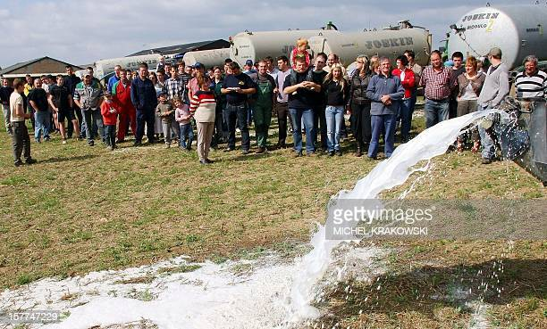 Belgian dairy farmers empty milk containers in a field near Sprimont on September 12 2009 to protest falling milk prices Belgian dairy farmers were...
