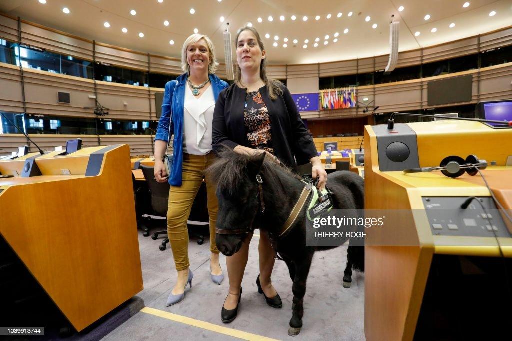Nos amis les animaux. - Page 38 Belgian-european-parliament-member-hilde-vautmans-writer-monique-van-picture-id1039913744