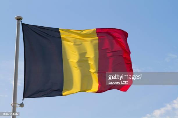 belgian flag - belgique photos et images de collection