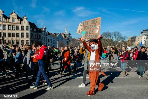 A Belgian student is holding a placard while he is wearing a bear costume during the demonstration for better climate policy in Brussels on February...