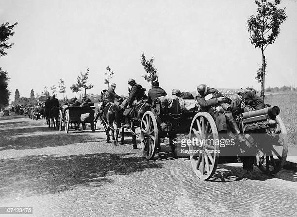 Belgian Troops In Belgium On 1940