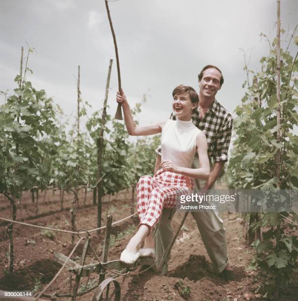 Belgianborn actress Audrey Hepburn ploughing a vineyard with her husband American actor Mel Ferrer Italy circa 1955