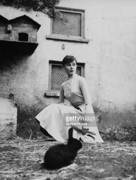 Belgianborn actress Audrey Hepburn with a black rabbit circa 1955