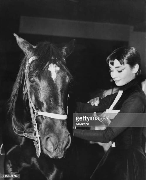 Belgianborn actress Audrey Hepburn with a circus horse at a charity performance with the Ringling Bros and Barnum Bailey Circus at Madison Square...