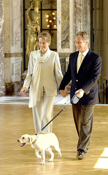 belgium-crown-prince-philippe-and-his-wife-princess-mathilde-announce-picture-id824817