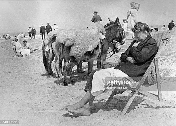 Belgium Flandern Flanders Ostende woman in a beach chair in the background donkeys Photographer Rolf Mahrenholz Published by 'Die Dame'...