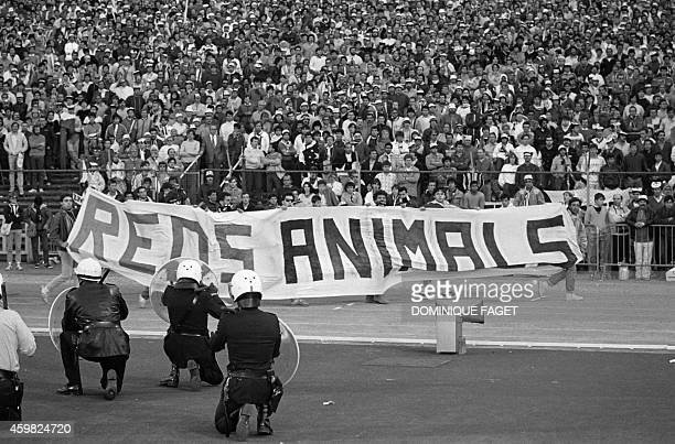Belgium policemen face Italian fans holding a banner where is written Reds animals on May 29 1985 in Heysel stadium in Brussels as violence has...