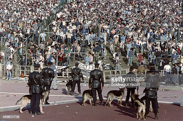 Belgium policemen with dogs face Italian fans on May 29 1985 in Heysel stadium in Brussels as violence has broken out one hour before the European...