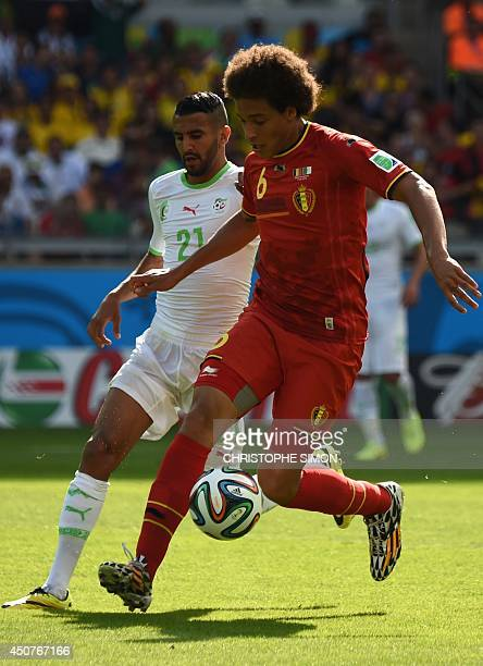Belgium's midfielder Axel Witsel and Algeria's forward Riyad Mahrez vie for the ball during a Group H football match between Belgium and Algeria at...