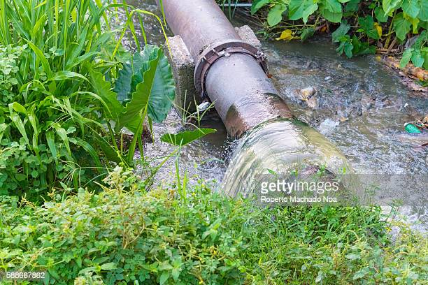 Belico river contamination The small river crosses Santa Clara city and it is heavily contaminated with sewage water