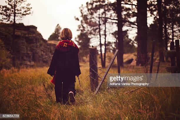 believe in magic - wizard stock pictures, royalty-free photos & images