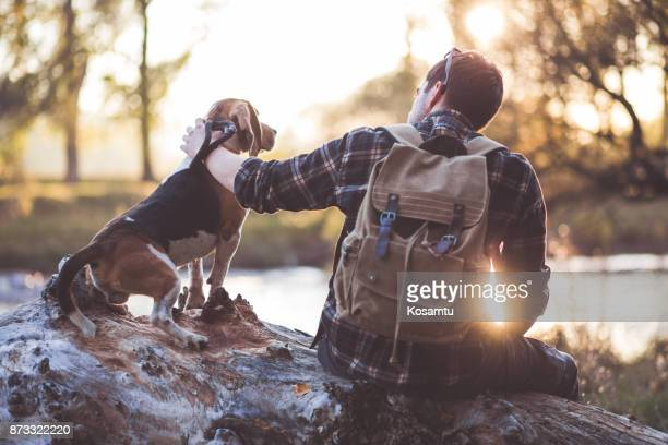 i believe in you - male animal stock pictures, royalty-free photos & images