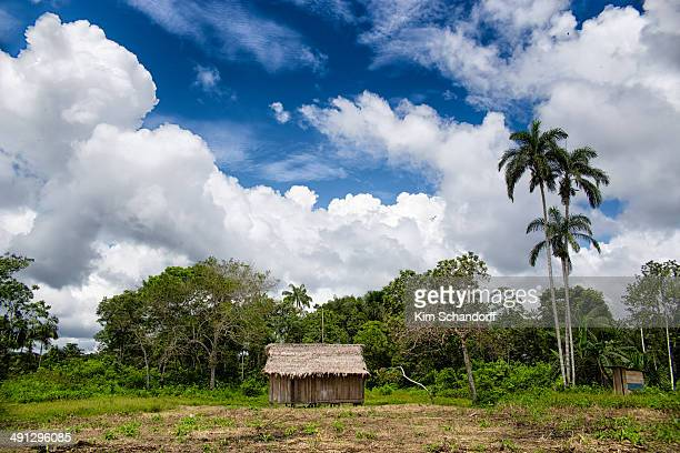 CONTENT] Believe it or not this little hut in the middle of the Peruvian jungle is actually a school You can see the toilet to the right