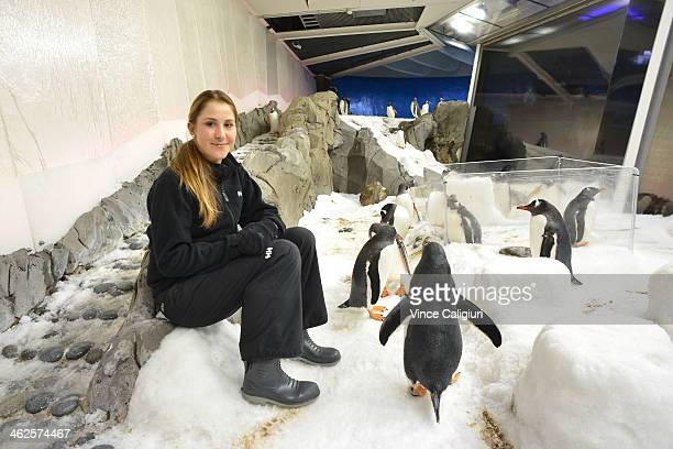 Belinda Bencic of Switzerland visits penguins at the Melbourne Aquarium during day 2 of the 2014 Australian Open at Melbourne Park on January 14 2014...