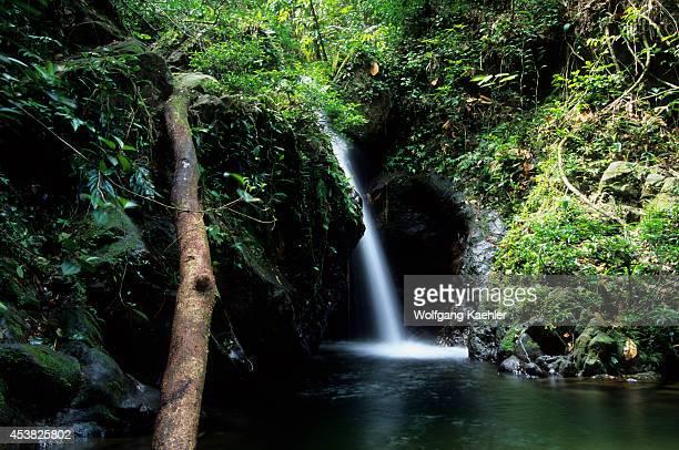 Belize Near Dangriga Cockscomb Basin Wildlife Sanctuary Rainforest Waterfall