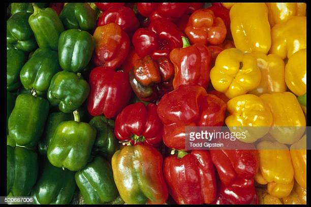 bell peppers for sale at market - gipstein stock pictures, royalty-free photos & images