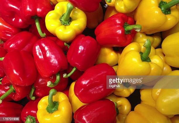bell peppers, red ones and yellow ones - yellow bell pepper stock pictures, royalty-free photos & images