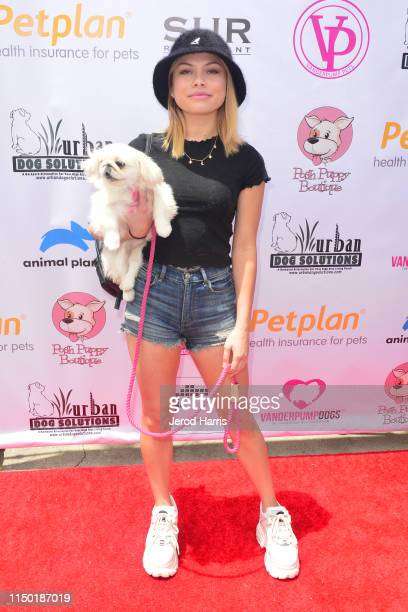 Bella Shepard attends 4th Annual World Dog Day at West Hollywood Park on May 18, 2019 in West Hollywood, California.