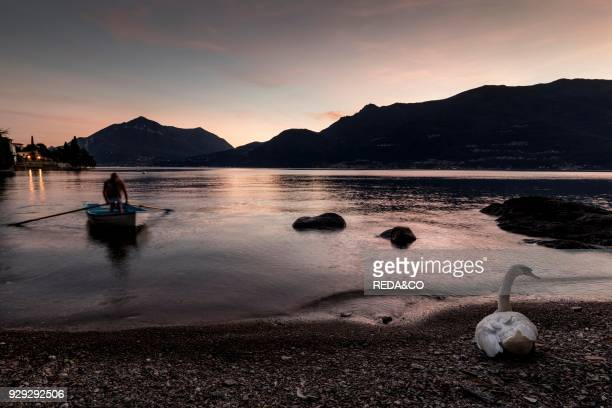 Bellano village Como Lake Lombardy Italy Europe