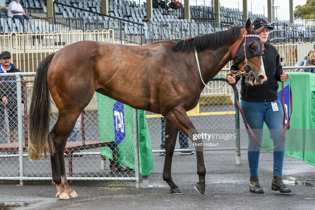 Bellaria (NZ) after winning the Werribee FC join as a Member F&M BM64 Handicap at Werribee Racecourse on January 13, 2018 in Werribee, Australia.