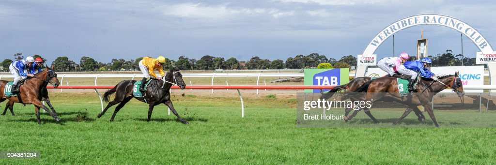 Bellaria (NZ) ridden by Michael Poy wins the Werribee FC join as a Member F&M BM64 Handicap at Werribee Racecourse on January 13, 2018 in Werribee, Australia.