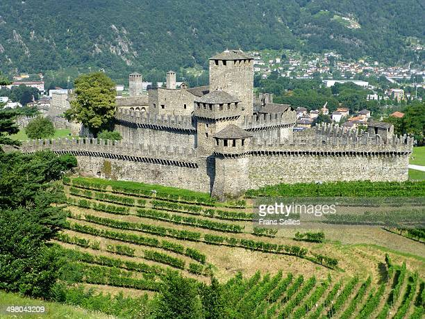 Bellinzona in the Swiss canton of Ticino is famous for its three castles . The three castles are on the UNESCO World Heritage list since 2000.