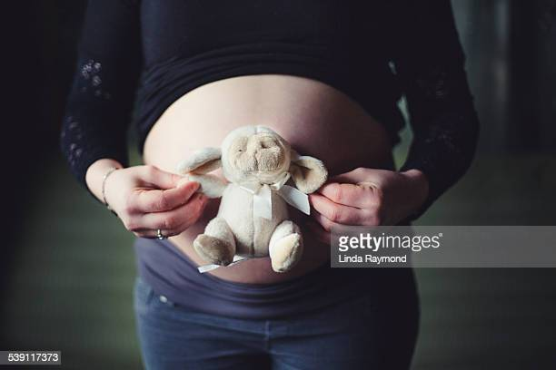 Belly of a pregnant woman and a teddy bear