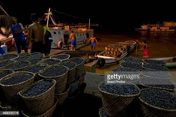 Belém harbour unloading of açaí fruits for exportation renewable resource that can provide a sustainable livelihood for subsistence harvesters...